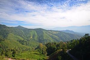 Doi Phu Kha National Park Nan Thailand