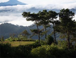 Huai Nam Dang National Park Chiang Mai Thailand