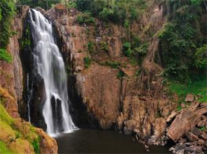 Khao Yai National Park Nakhon Ratchasima Thailand