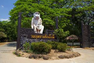 Kosumpee Forest Park Maha Sarakham Thailand