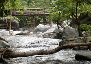 Lan Sang National Park Tak Thailand