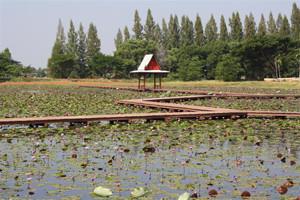 Nong Han Lake Sakon Nakhon Thailand