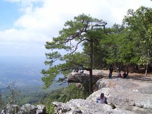Phu Kradueng National Park Loei Thailand