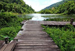 Thale Ban National Park Satun Thailand