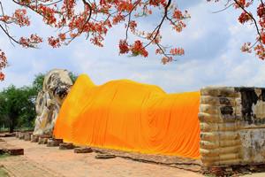 Wat Lokkayasutharam Ayutthaya Thailand